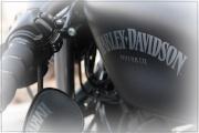 Forum Harley 46-7