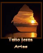 Tulio Jesus Arias
