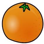 Orange3008