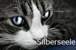 Silberseele