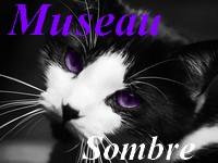 Museau Sombre