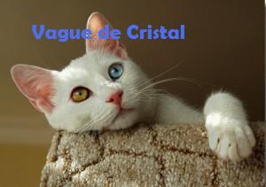 Vague de Cristal