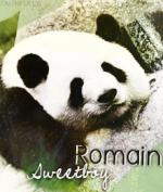 Rominou