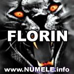 fabianflorian93