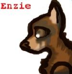 Enzie