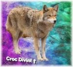 Croc Divin