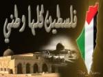 قلبي فلسطين