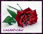 linaryan