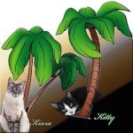 KittyKiara