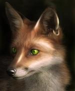 Juran_Fox