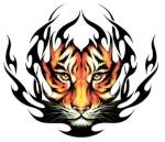 tigretribal
