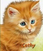 Cat Yelizli