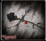 Namei