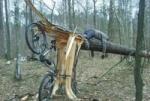 biker_madrid