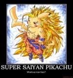 Pokemon Z RPG