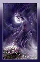 luna_luna