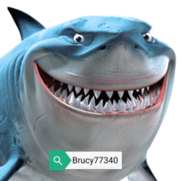 Brucy77340