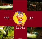 ouioui92612