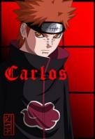 carlitox88x