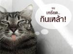 _sa_mu_l2ai_