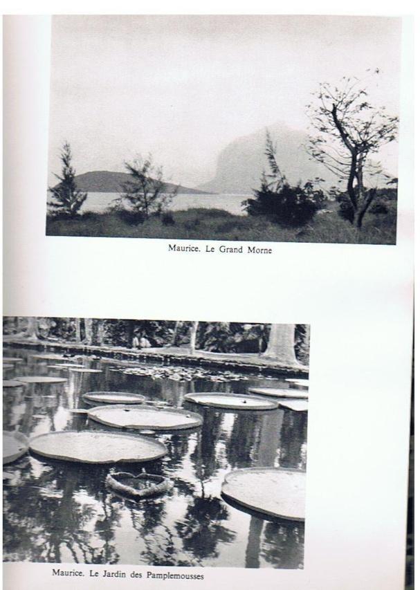 CROISEUR ÉCOLE JEANNE D'ARC - Page 6 Campag27