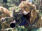Cat killer 46