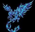 phoenix675