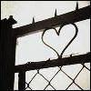 (*)loveorhate(*)