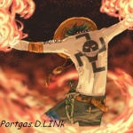 Portgas D LINk
