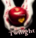 Ani_moonlight