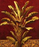 Bambous et graminées 182-8