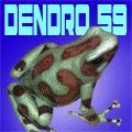dendro59