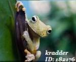 Kradder