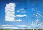 رفيق الغيم