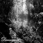 Dimmgard