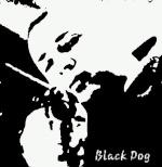 BlackDog{bRB}