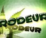 Rodeur Gerudo