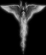 Darck angel