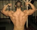 Musculitos