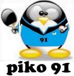 piko91