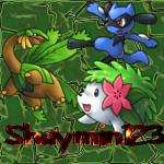 shaymin123