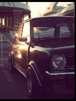 Robin69