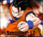 Sangohan12
