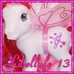 Libellule13