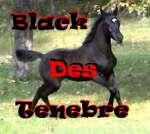 Black Des Tenebre