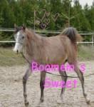 Boamem's Sweet
