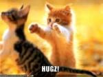 KittyCat<3