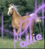 Ollie Lovely Girl