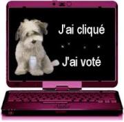 VOTES DE MARS  689533874