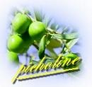 picholine